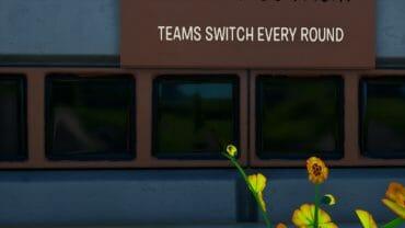Team Swap Boxfight