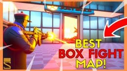 Box Fight THumbnail